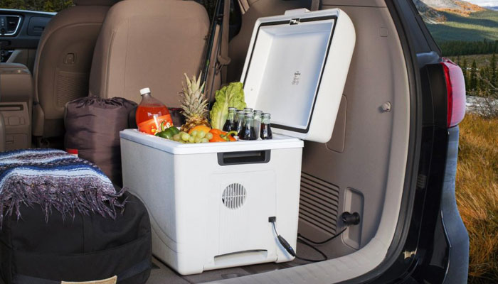 camping cooler reviews